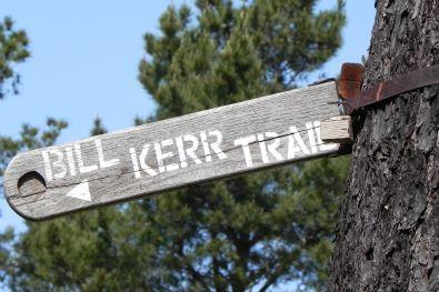 hiking trail cambria, ca