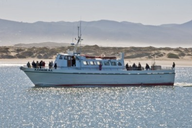 Sport fishing charters on the central coast for Deep sea fishing morro bay
