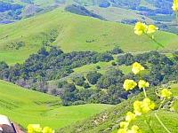 hills highway 46