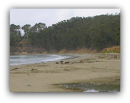 Sam Simeon Cove