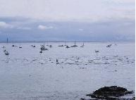 port of san luis