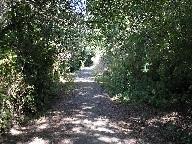trail cambria