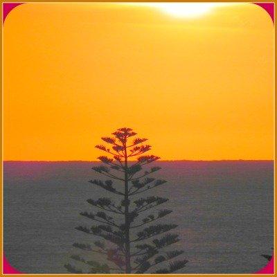 sun set central coast